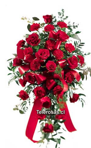 Manto f�nebre cubre urna Rosas y Claveles.