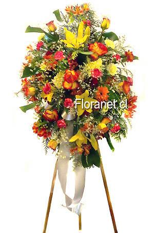 Flores Florerias Chileflorerias Chilefloresflorerias